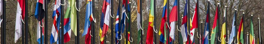 International-Program-on-the-Management-of-Sustainability