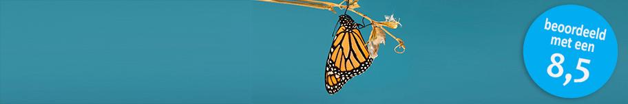 Masterclass-Innovatie-&-Transformatie