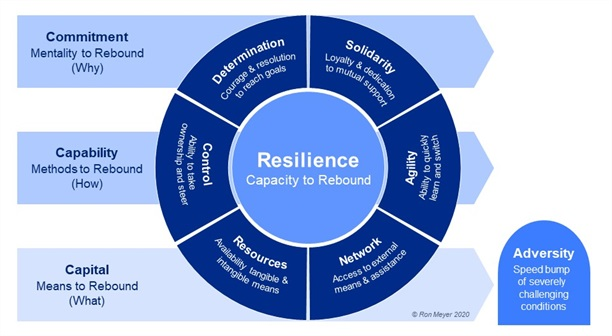 17_Rebound Model of Resilience