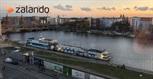 Life after TIAS: working at Zalando in Berlin